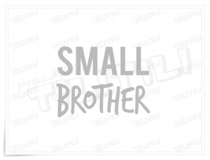 SMALL brother